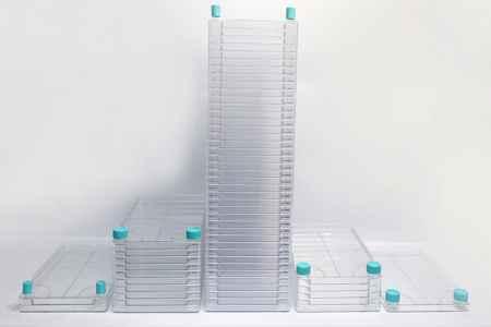 5层细胞工厂