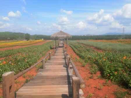江西休闲旅游生态园在哪里