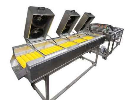 潍坊净菜加工生产线生产供应厂家