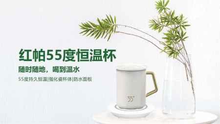 深圳红帕55度恒温杯价格